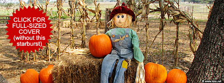 Scarecrow and Pumpkins Facebook Cover