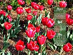 April Calendar Wallpaper