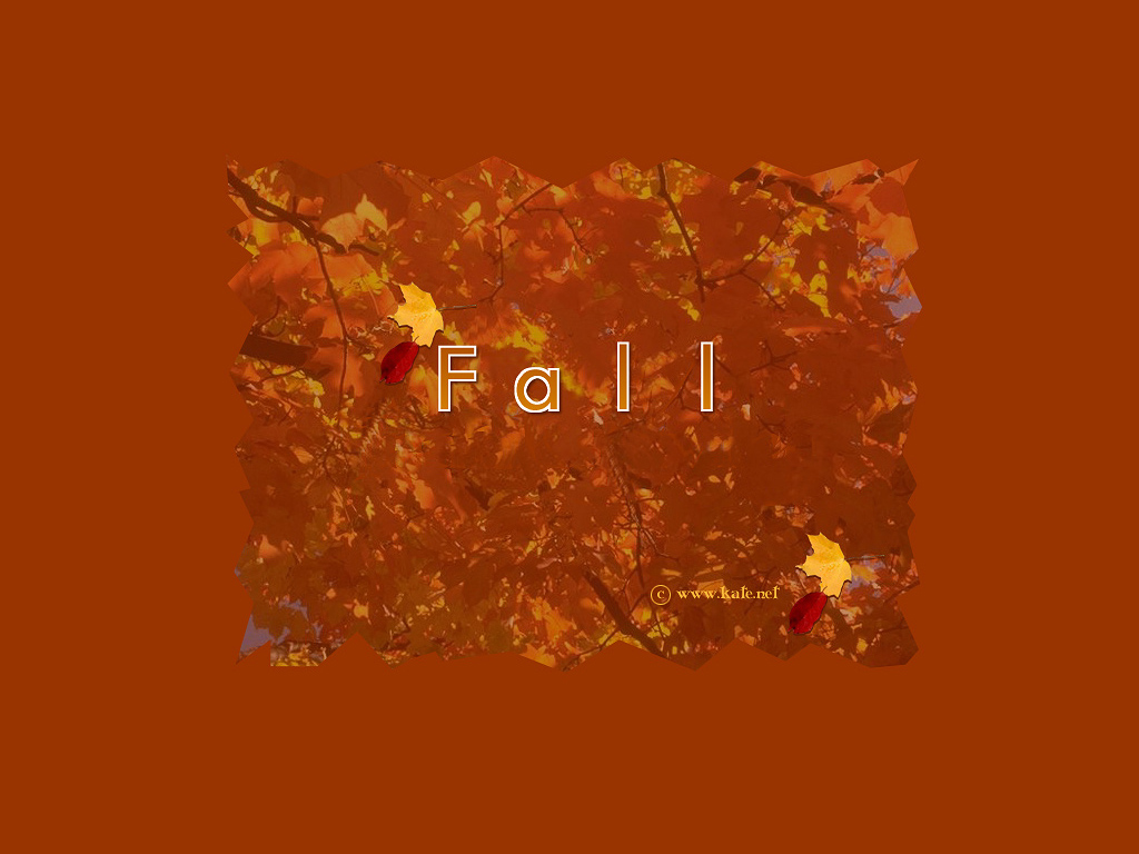 Fall Wallpapers, Fall Screensavers, and a Fall Quiz by Kate.net