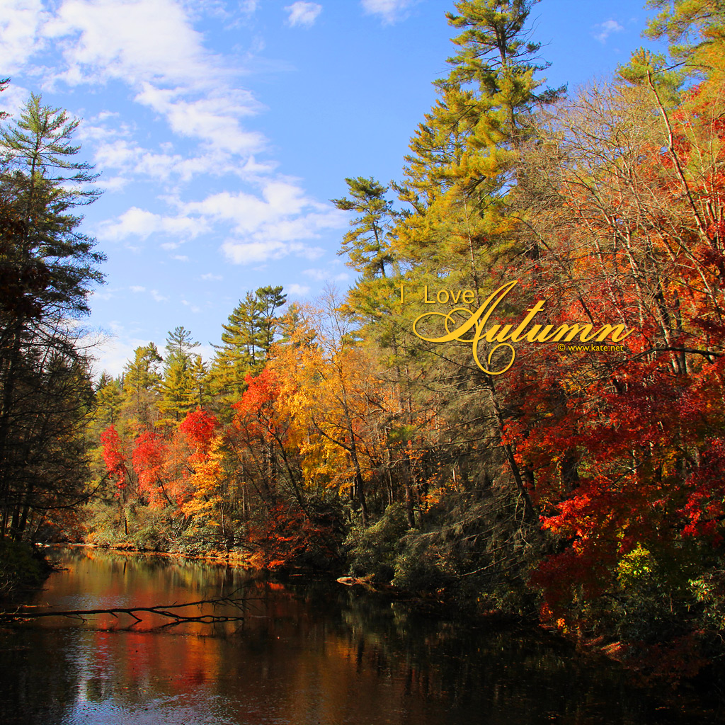 Fall Wallpaper Images Free: Fall Wallpapers, Fall Facebook Covers, Fall Printables By
