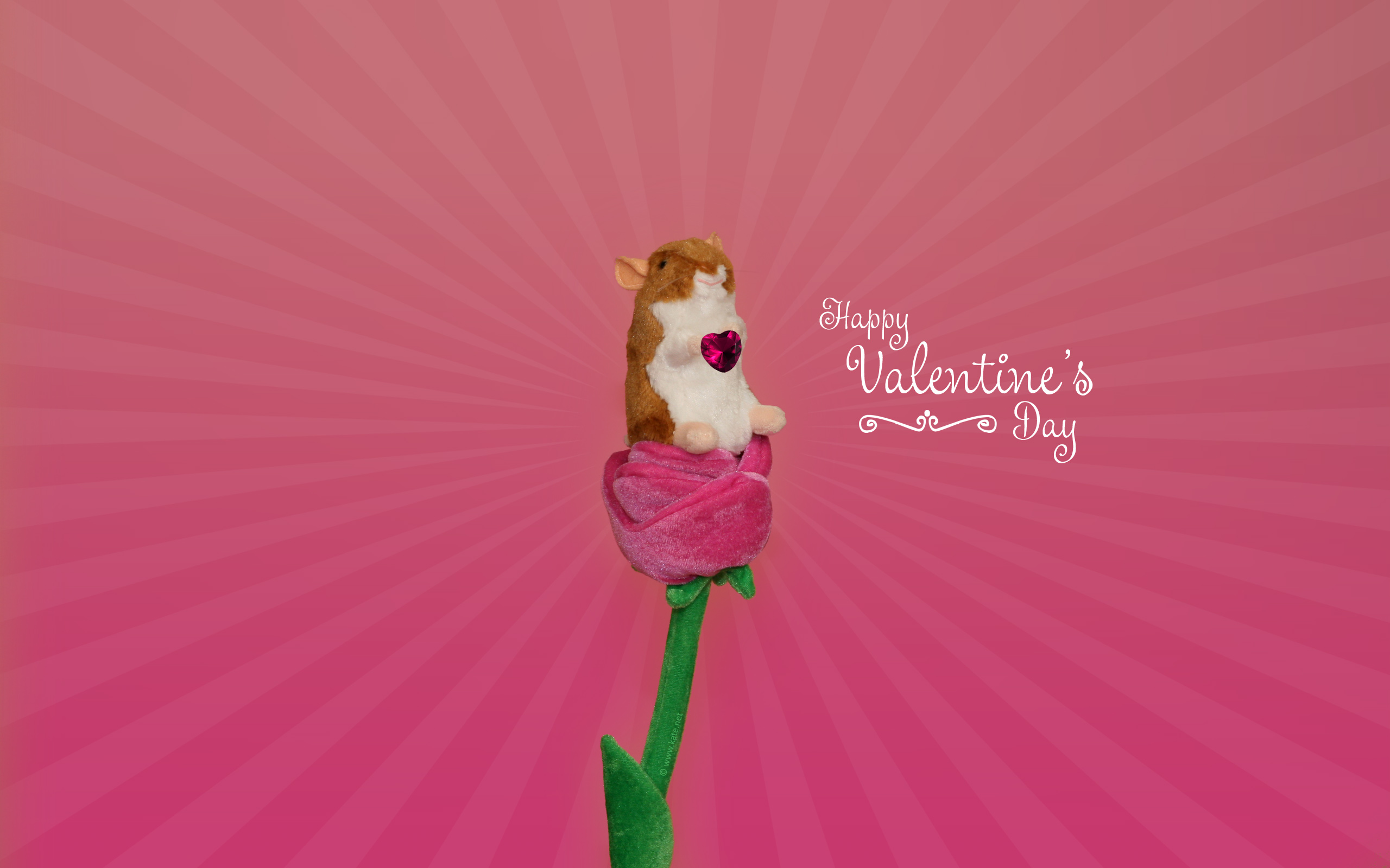 Valentine S Day Wallpapers Desktop Backgrounds By Kate Net